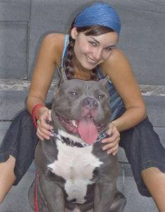 mugleston pitbull bully dog